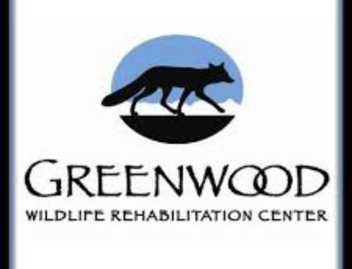 Boulder Scientific Supports Greenwood Wildlife Rehabilitation Center Fundraiser